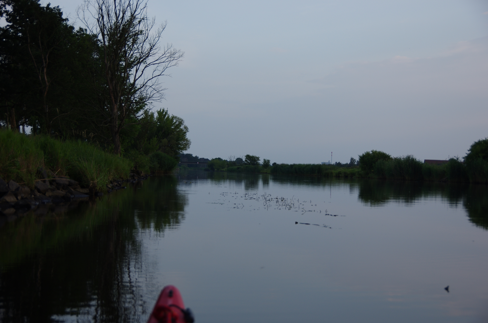 kayaking-odra-east-and-west_19-00-30_25-07-2016